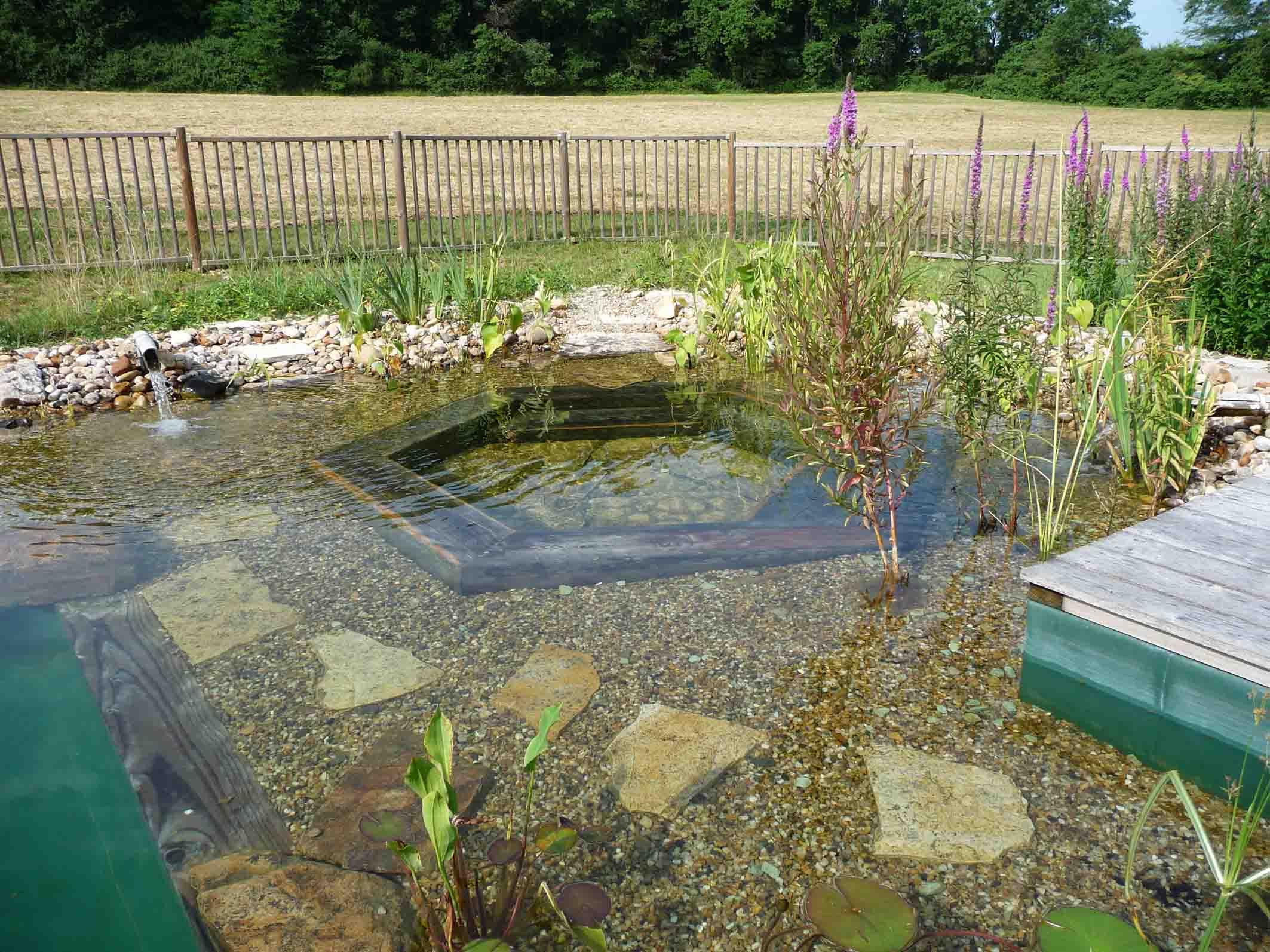 Domaine de fonroques piscine naturelle for Autoconstruction piscine naturelle